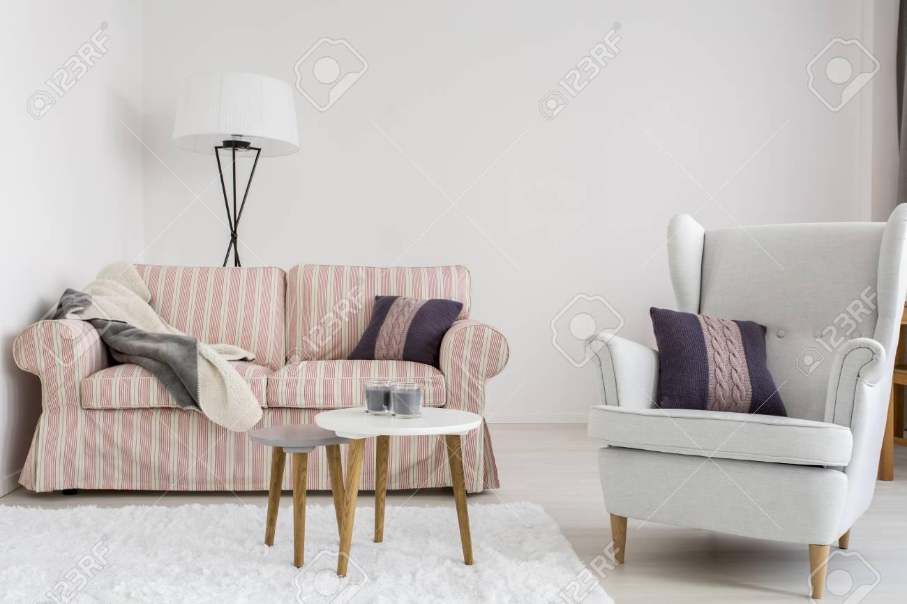 Prise De Vue D\'un Salon Confortable Avec Un Canapé, Un Fauteuil Et ...
