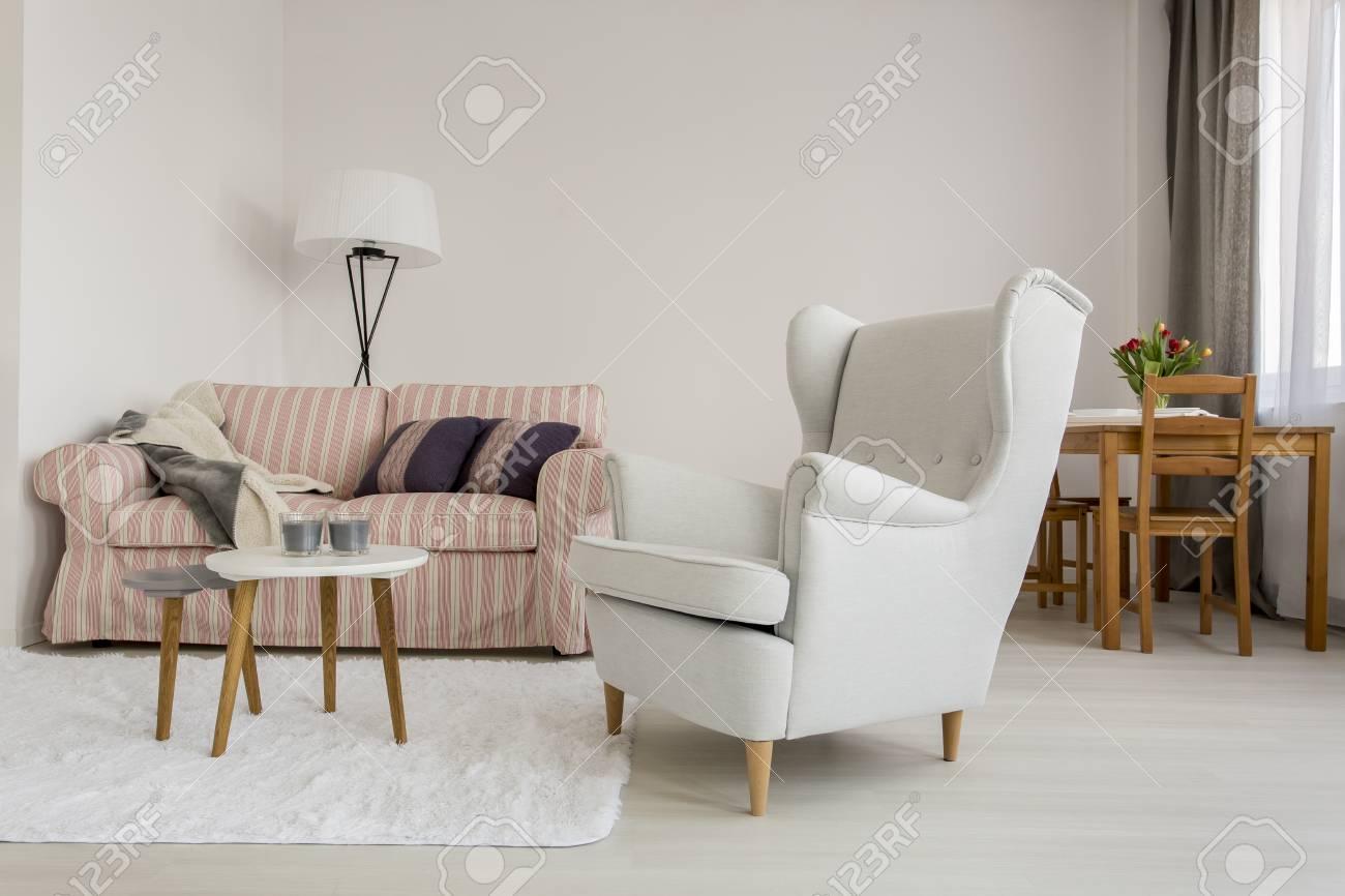 Prise De Vue D\'un Salon Confortable Avec Un Grand Fauteuil Et Un ...