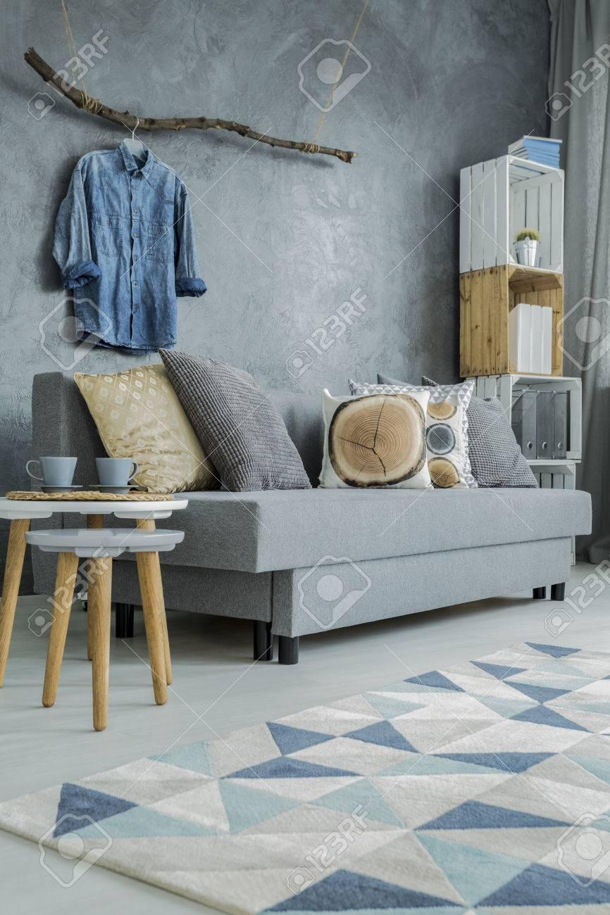 Salon Moderne En Gris Avec Canapé, Motif Tapis Et Décorations De La ...