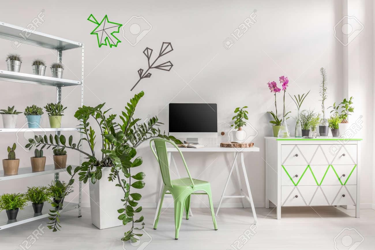 Innen Weisse Haus Dekoriert Mit Topfpflanzen Einfachen Schreibtisch