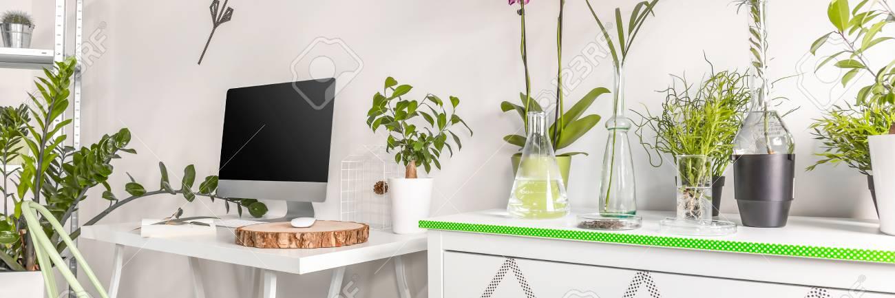 Ein Teil Der Gemutlichen Wohnzimmer Mit Kommode Schreibtisch Mit