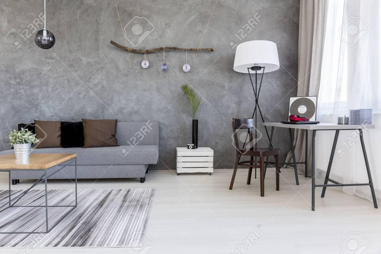 Salon Moderne En Gris, Avec Un Mobilier Simple Et Des CD Décoratifs ...