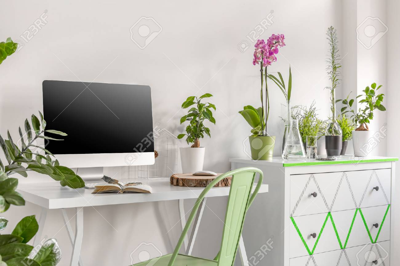 office flower pots. Home Office Area With Computer, Commode And Flower Pots Orchids Stock Photo - 64804161 L