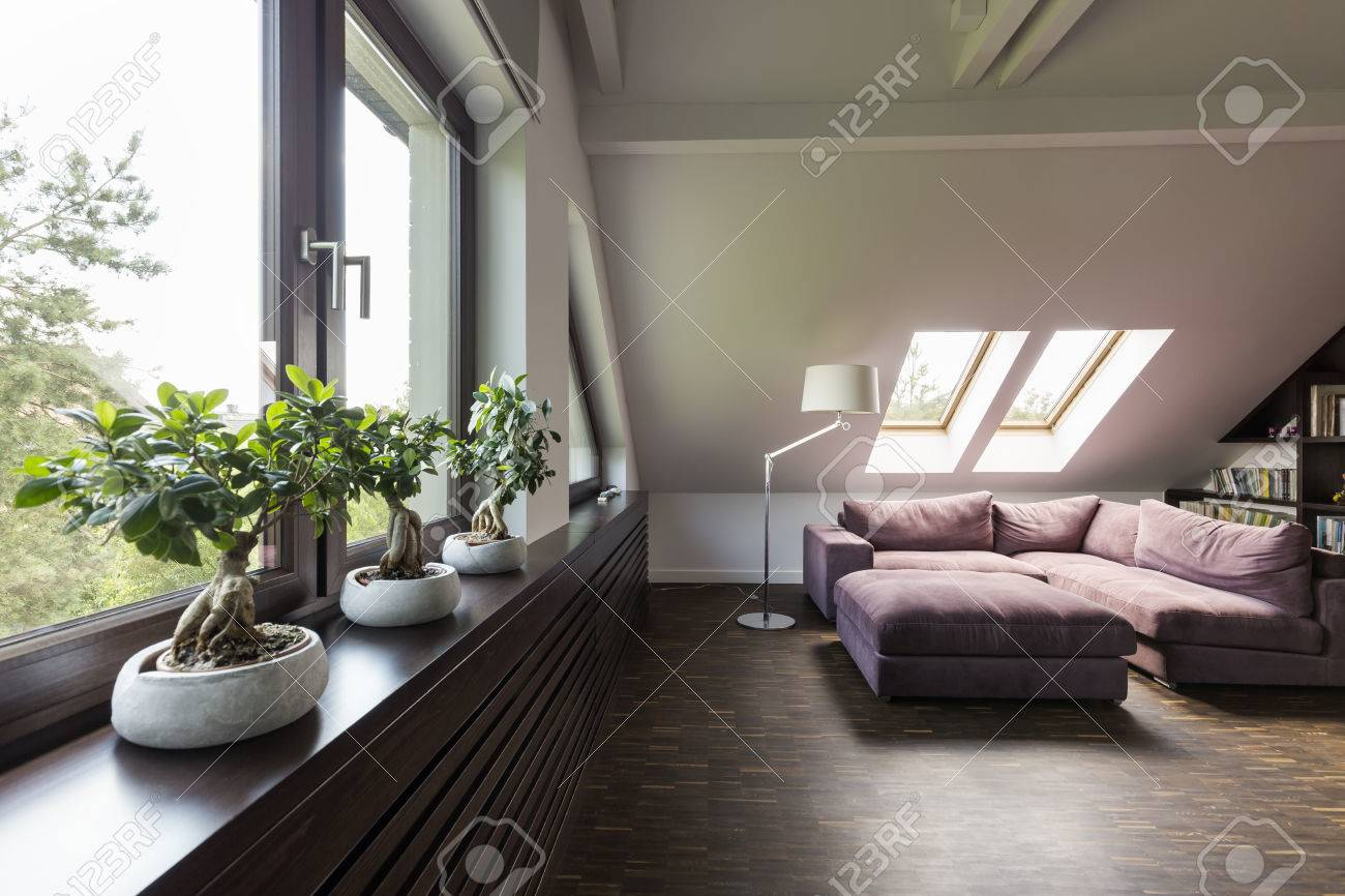 Ordinaire Attic Lounge Room With Large Couch And Decorative Bonsai Trees Stock Photo    67265857