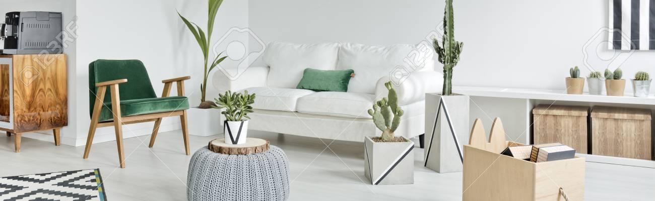 Geräumige Weiß Wohnzimmer Mit Weißen Sofa Und Pflanzen Standard Bild    67267366