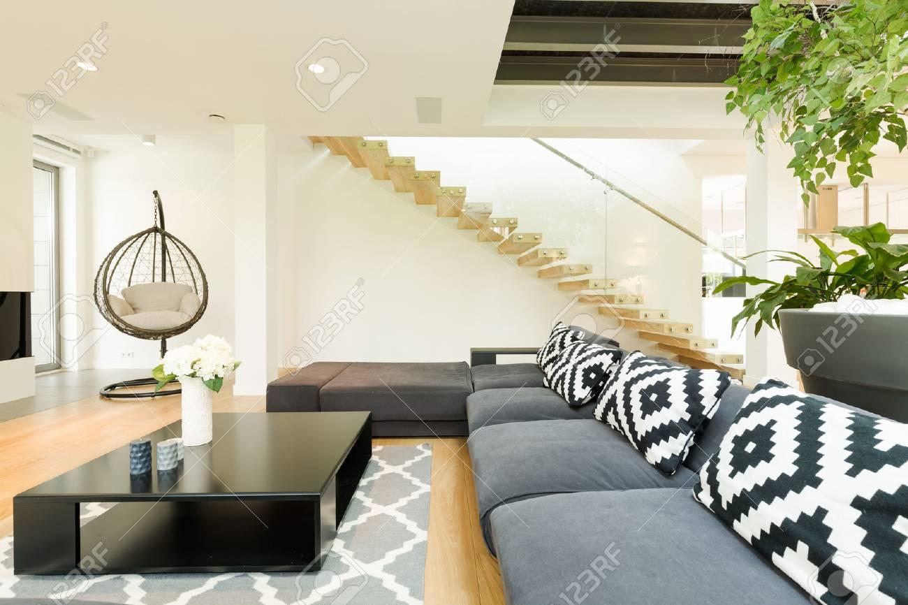 Table Basse Grand Salon grand salon avec canapé, oreillers à motifs, table basse et plantes