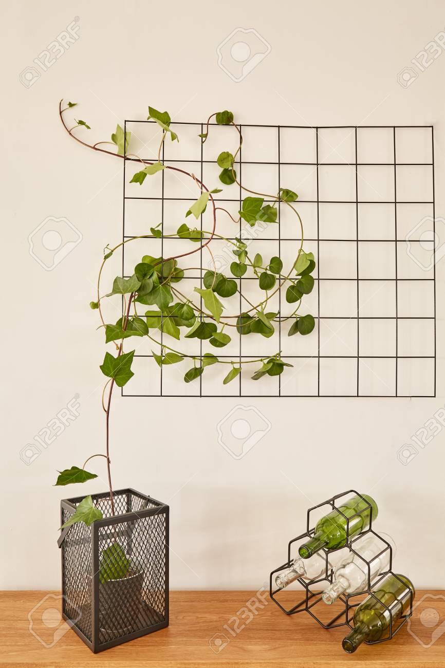 banque dimages intrieur de maison blanche avec accessoires de fil noir et lierre vert