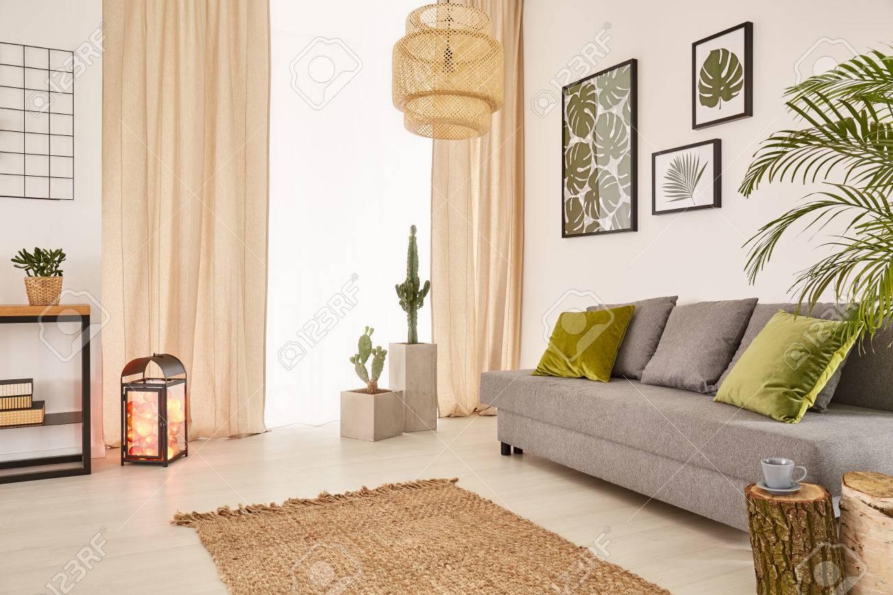 Leichter Raum Mit Grauem Sofa Grune Kissen Teppich Und Fenster