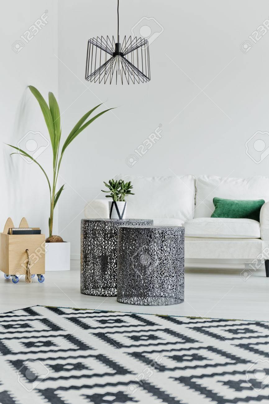 Style Scandinave Dans L\'intérieur Du Salon Moderne Banque D\'Images ...