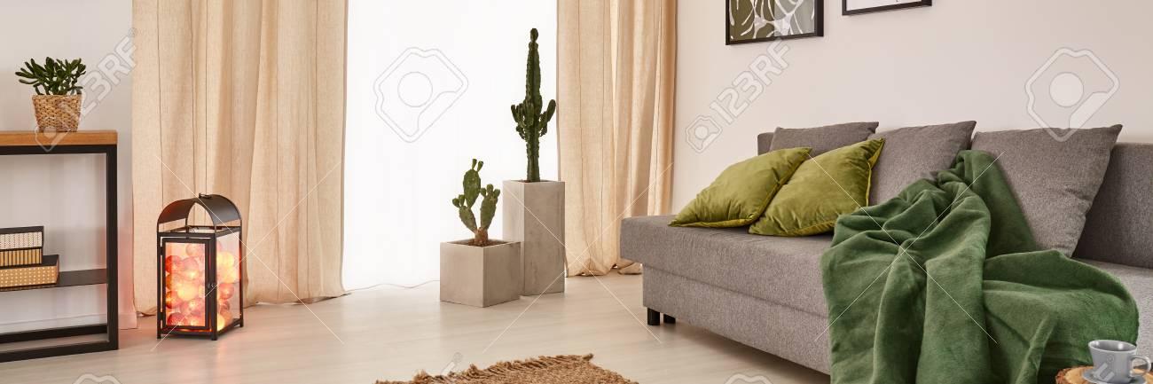 Gemutliches Wohnzimmer Mit Grossem Fenster Und Grauem Sofa Mit Gruner