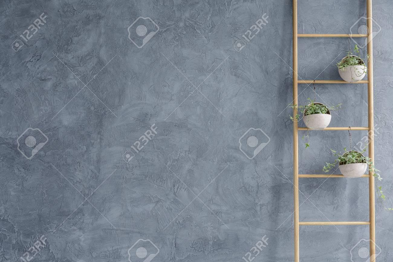 DIY wooden flower stand and grey wall stucco Standard-Bild - 70236655