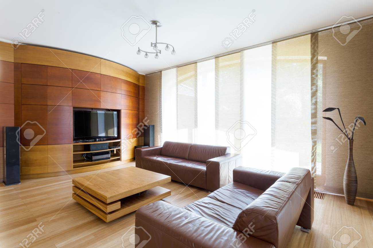 Elegant Living Room With Two Leather Sofas, Wide Window And Home ...