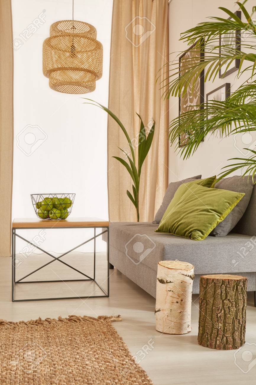 Corner Of Plants Apartment With Sofa And Coffee Table Stock Photo ...