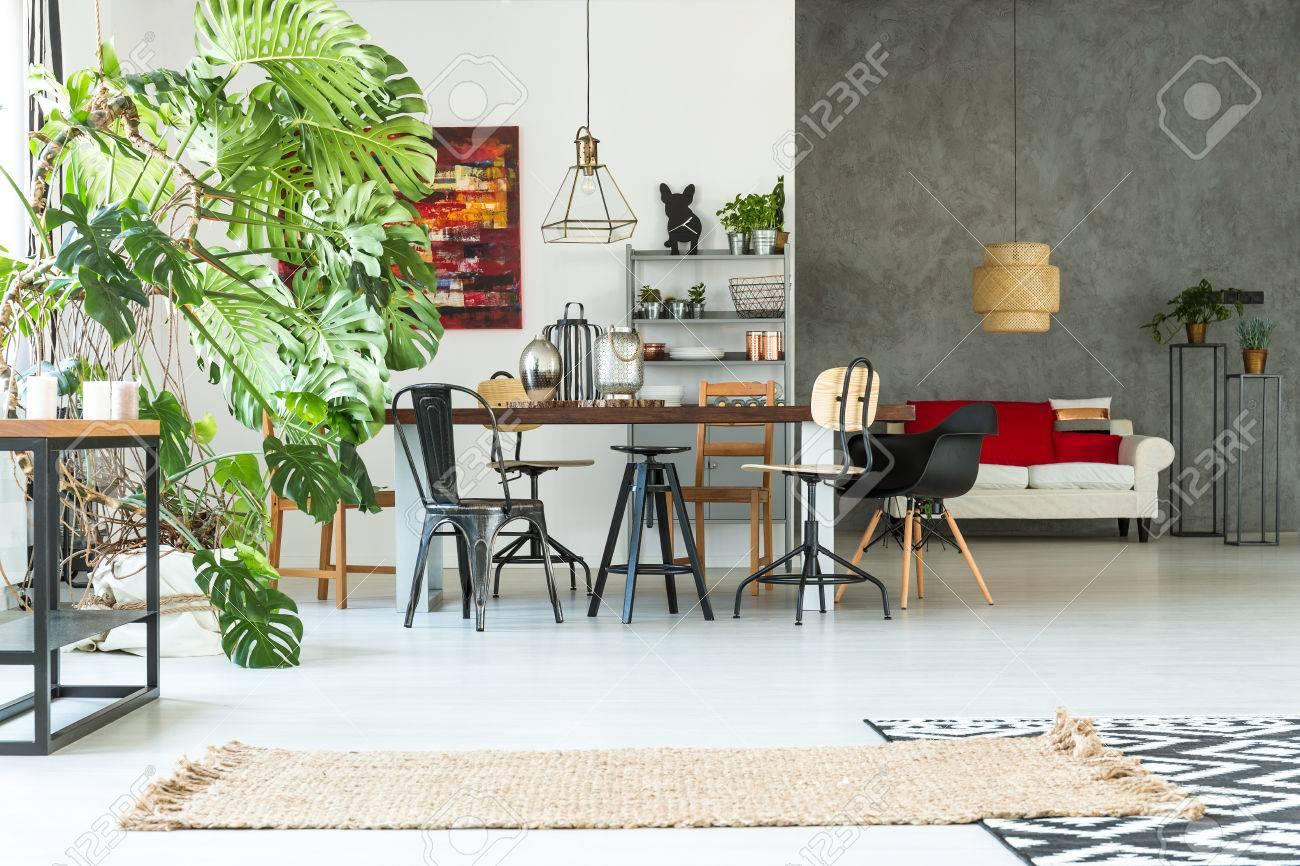 Functional Apartment With Dining Table, Sofa, Chair And Monstera ...