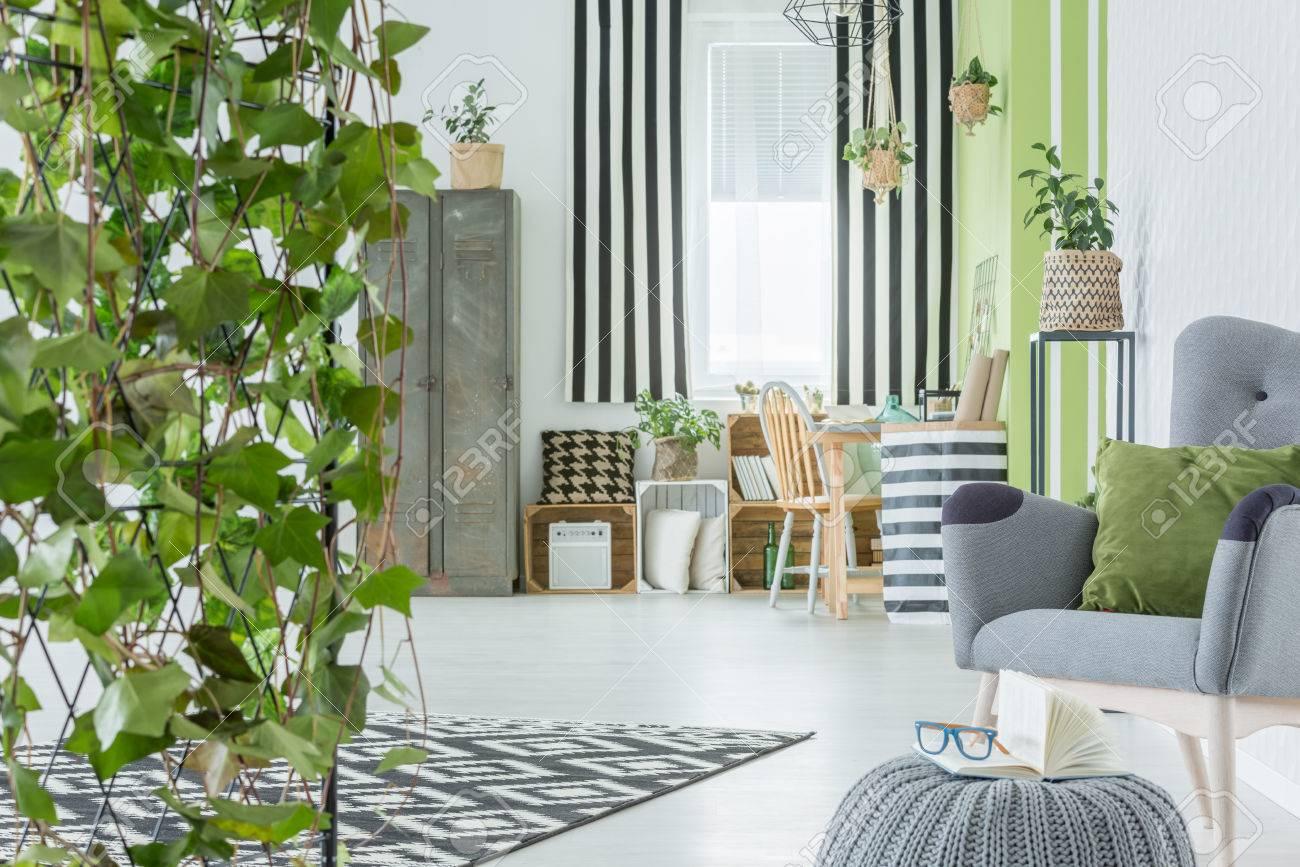 Intérieur De Maison Avec Lierre Décoratif, Fauteuil Vert Et Garde ...