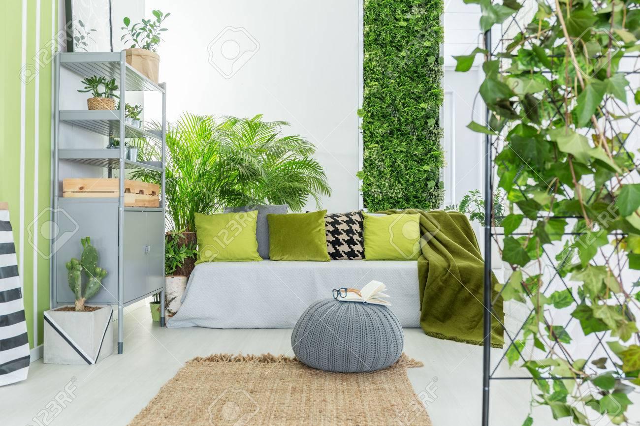 salon botanique avec canapé gris, oreillers verts et bibliothèque Banque d'images - 72944001