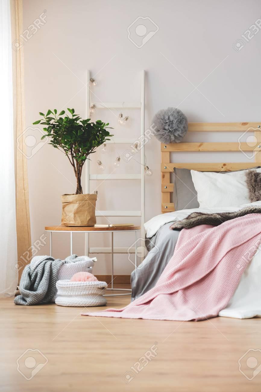 Gemütliches Schlafzimmer Mit Pflanzen Und Glühbirnen Dekoriert ...