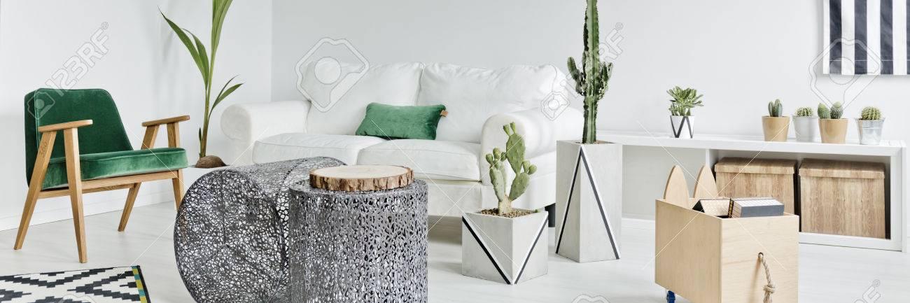 Modernes Weißes Wohnzimmer Mit Kakteen Und Grünem Zubehör Dekoriert  Standard Bild   76939986