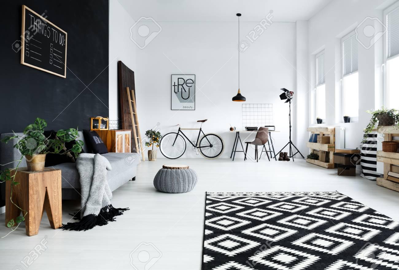 Chambre multifonctionnelle noir et blanc avec canapé plantes