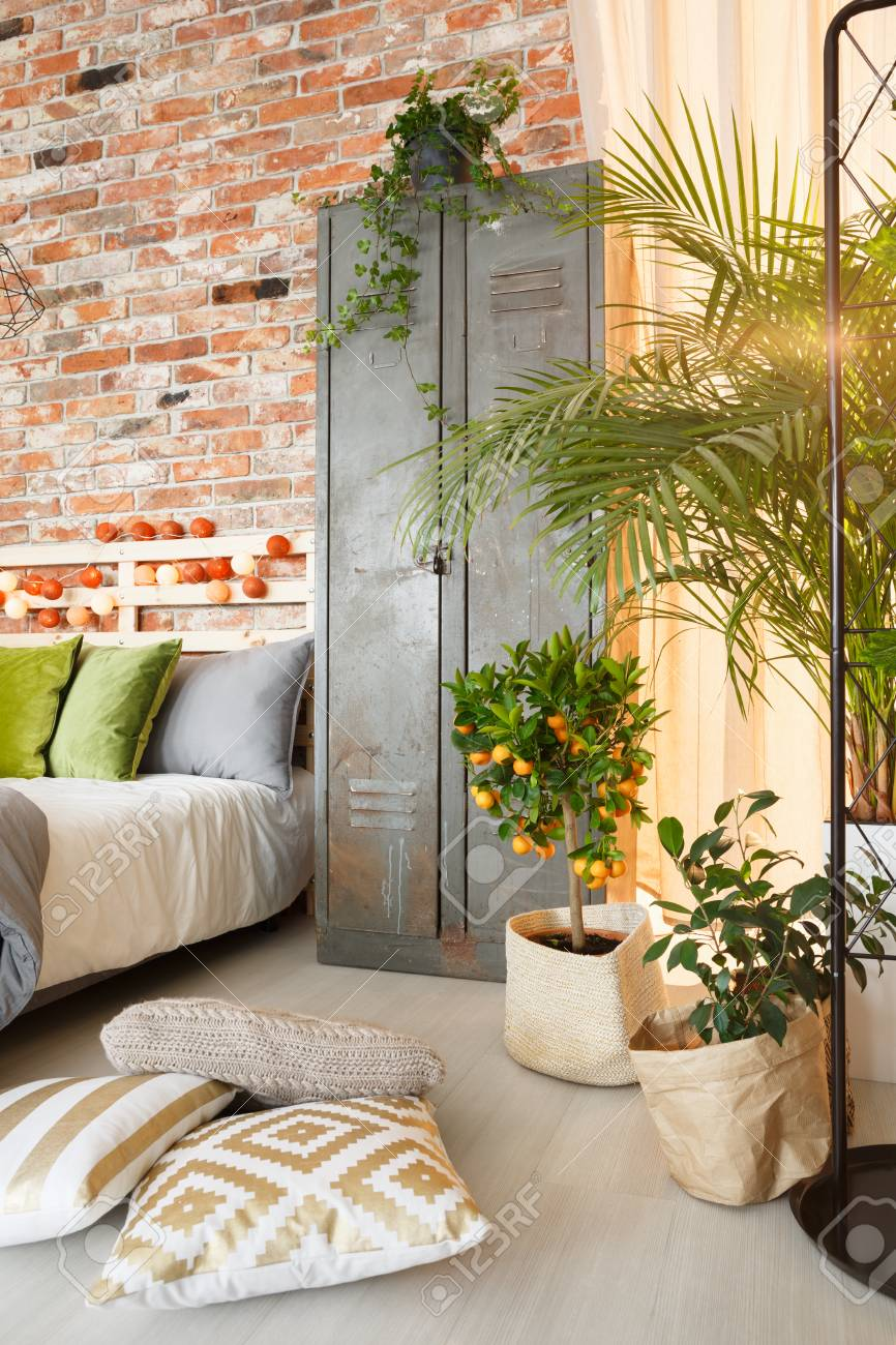 . Metal locker and exotic plants in modern bedroom