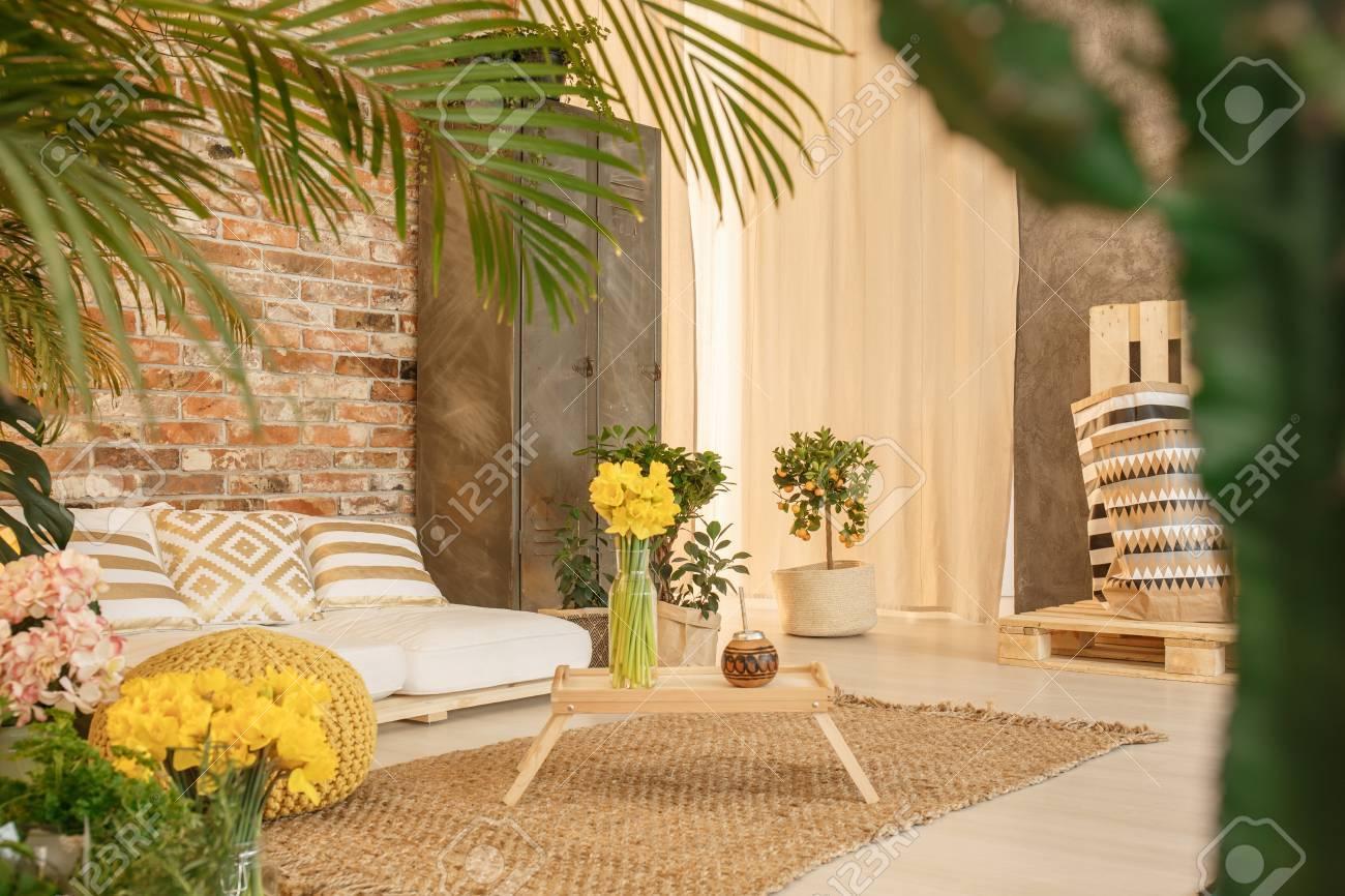 Petit Jardin Dans Un Salon Confortable Avec Décoration En Bois ...