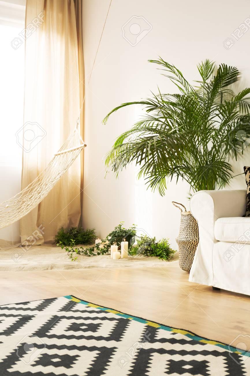Salon moderne avec canapé, hamac, plantes, tapis de modèle