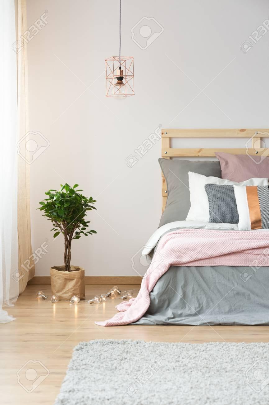 Moderne Dekoration Im Hellen Gemütlichen Schlafzimmer Mit Anlage ...