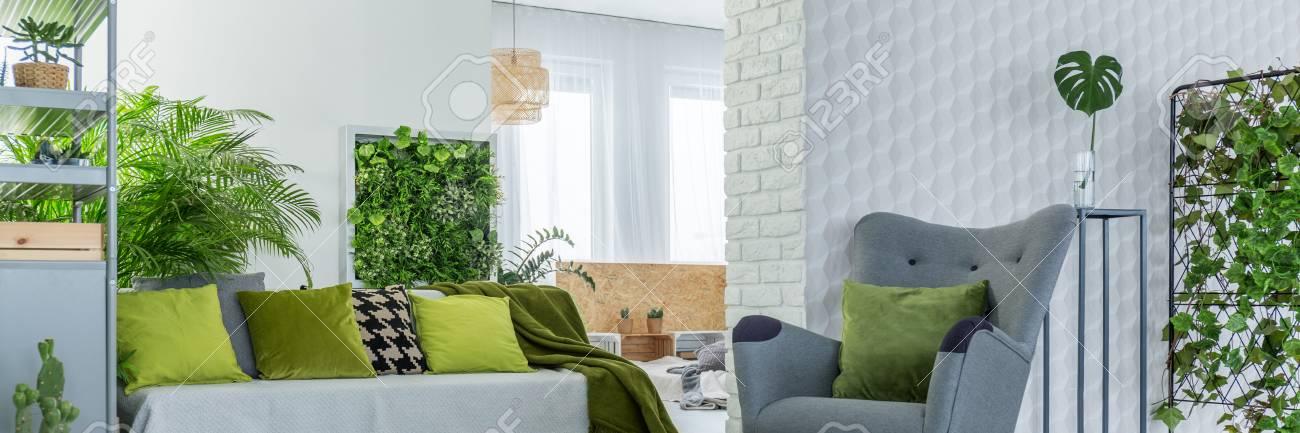 Graue Möbel In Weiß Und Grün Stilvolle Wohnzimmer Standard Bild   82516842