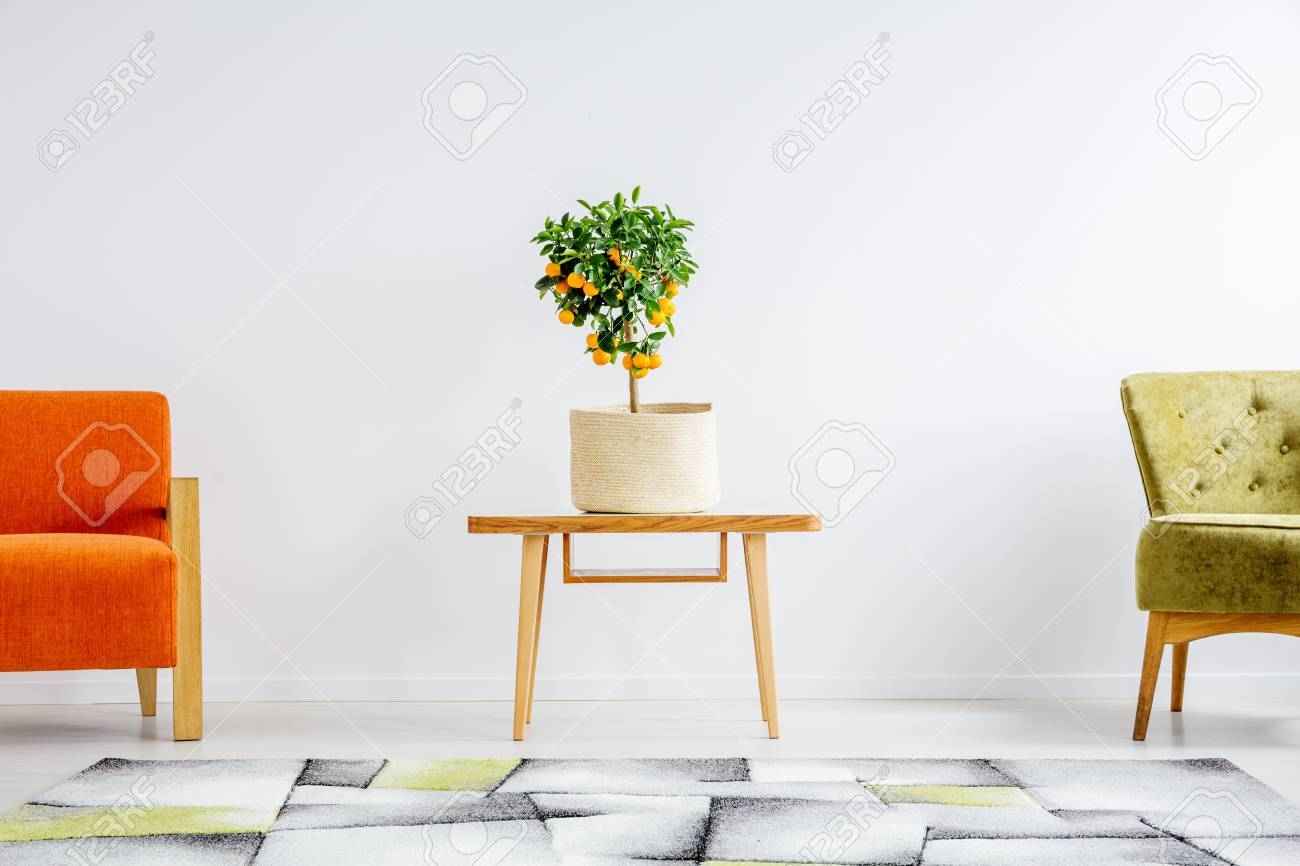 Symmetrically Arranged Orange And Green Chair With Table Between ...
