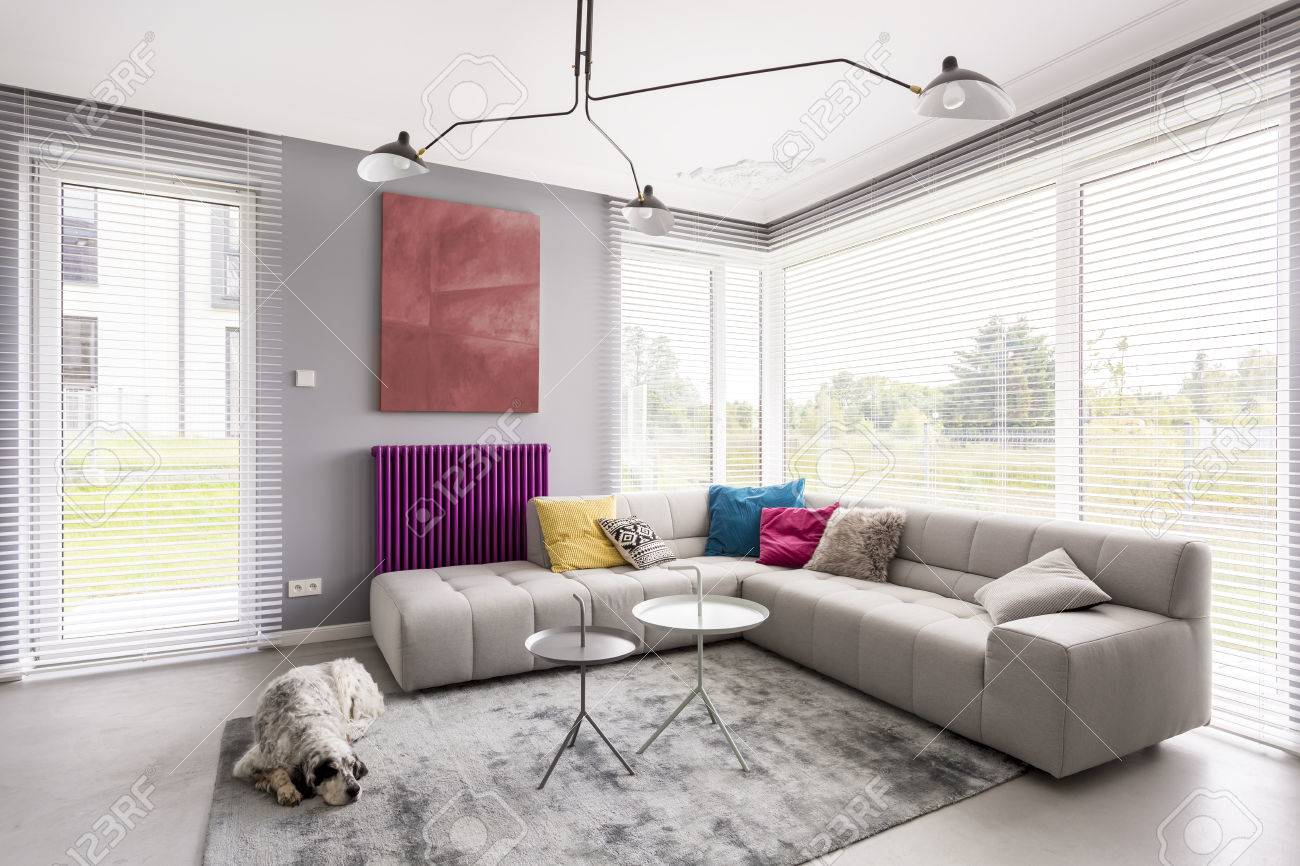 Bright modern living room with comfortable corner couch, artwork,..