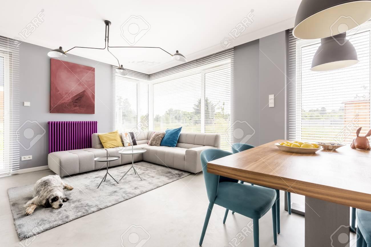Modernes Wohnzimmer Für Die Familie Mit Grauen Wänden, Beiges Ecksofa,  Große Fenster, Gemälde