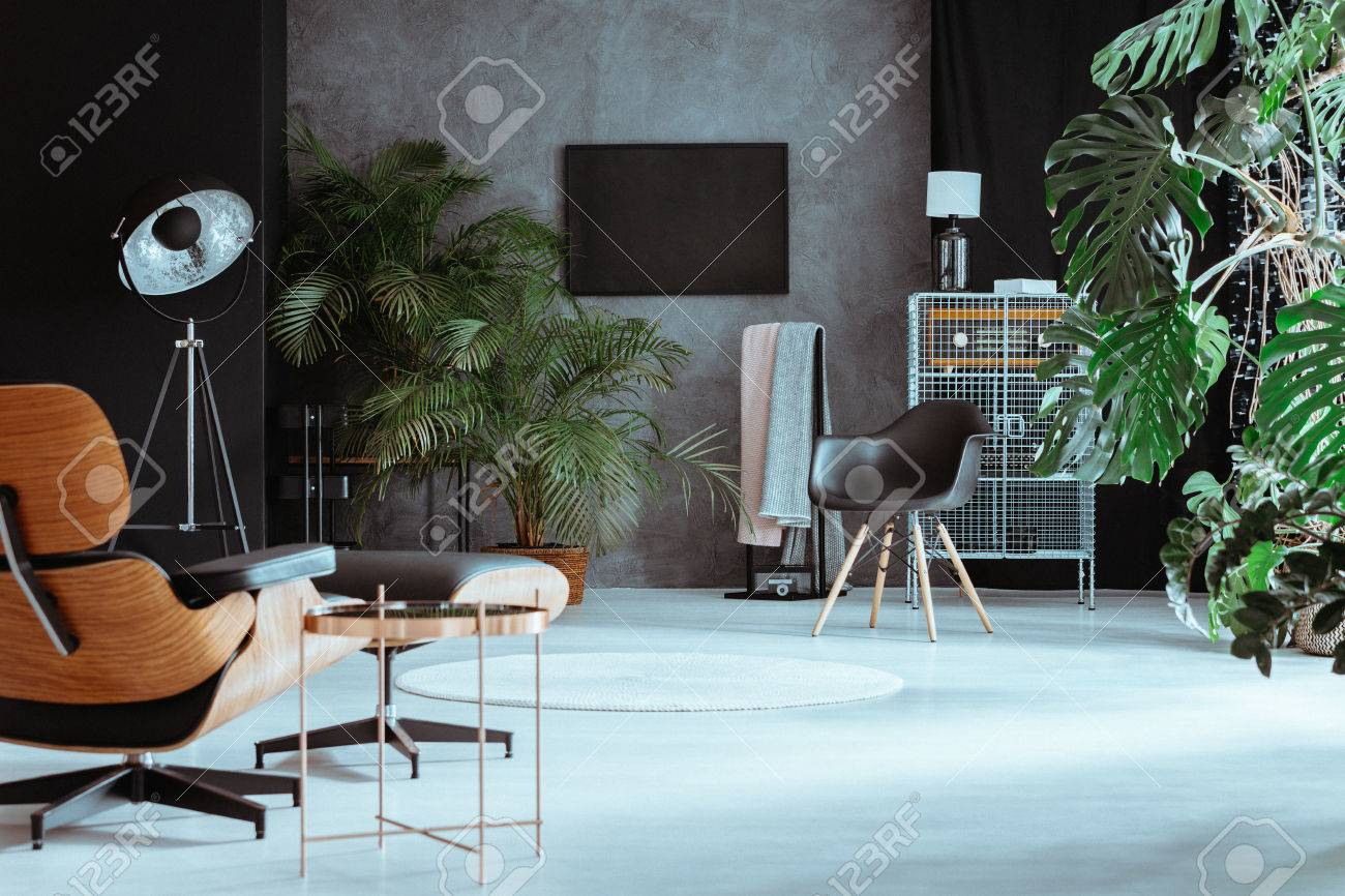 Open Space In Big Living Room With Exotic Plants And Retro Furniture