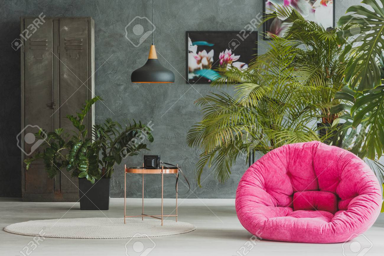 photo living room with pink plush armchair exotic plants and retro camera on metal table