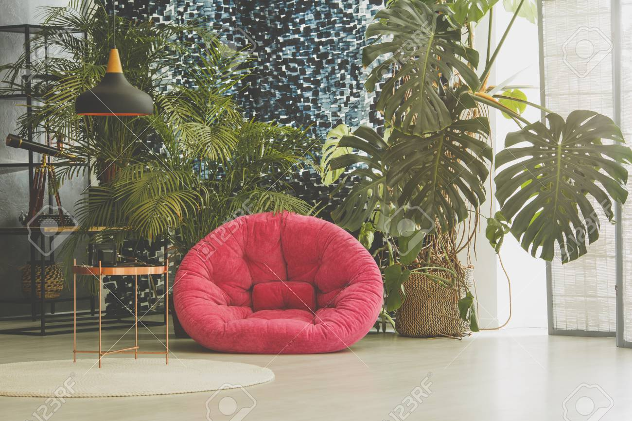 photo room with pink plush armchair plants and vintage furniture