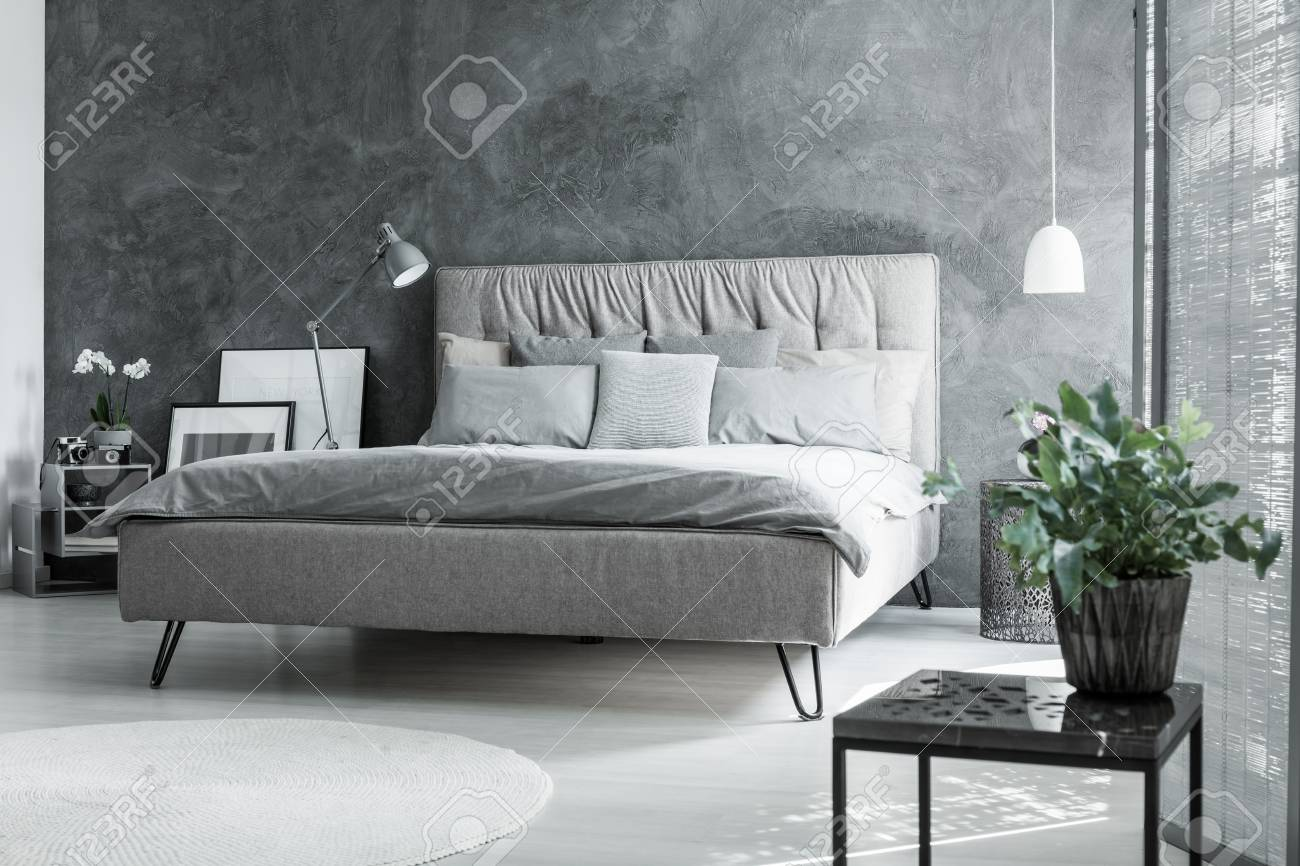Plant On Black Table In Inspiring Grey Bedroom With King Size