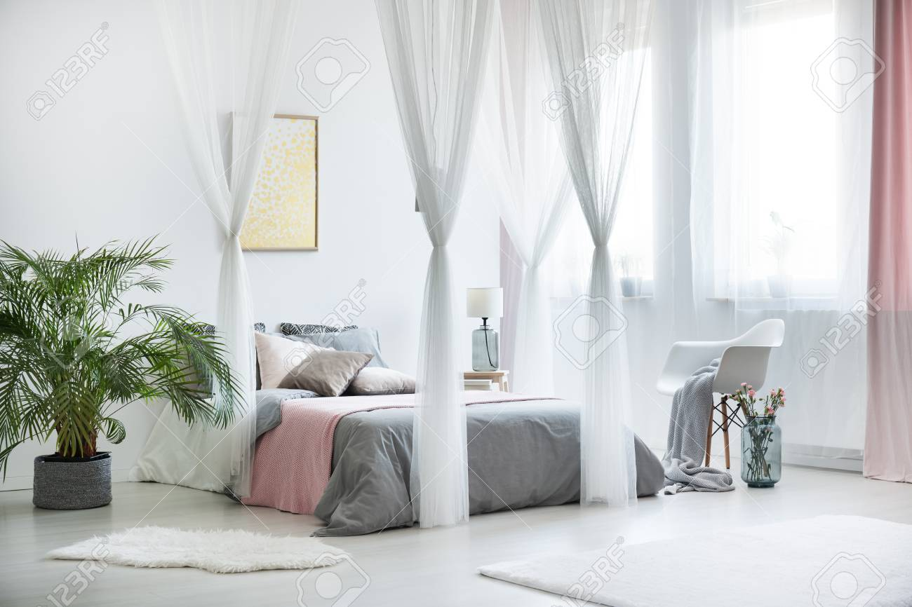 - Plant Next To King-size Bed With Canopy In Sophisticated Bedroom