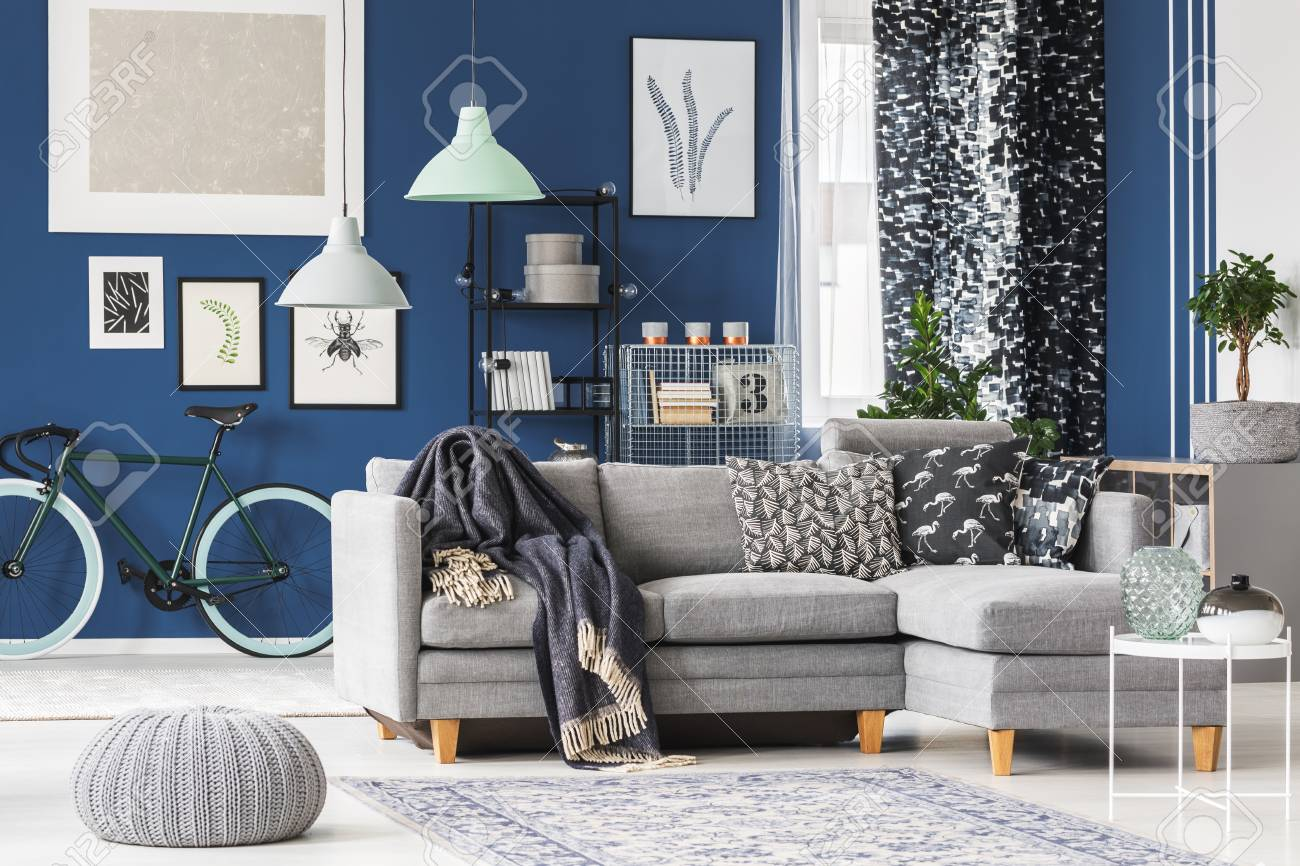 Sapphire living room with cozy gray sofa and bike
