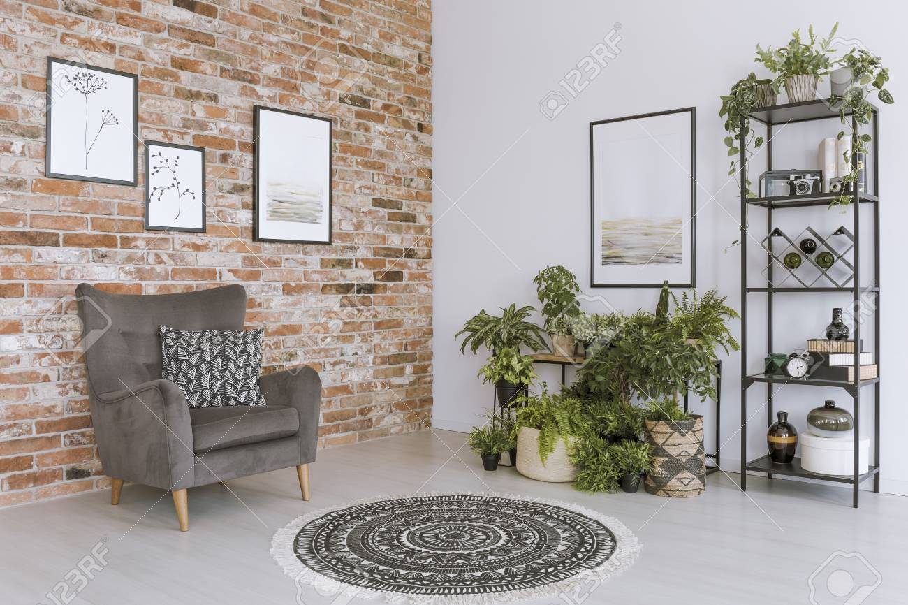 Round Carpet In Living Room With Plants And Grey Armchair With