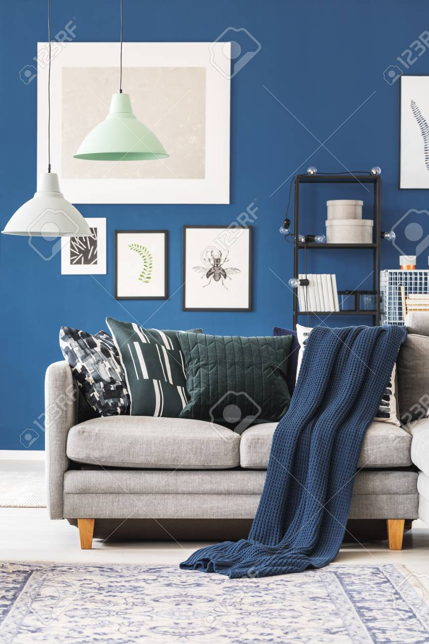 photo navy blue blanket on grey couch with pillows in living room with lamps and gallery on wall
