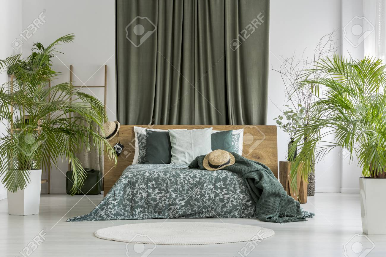 Fabulous Plants In Olive Bedroom With Curtain Behind King Size Bed With Download Free Architecture Designs Scobabritishbridgeorg