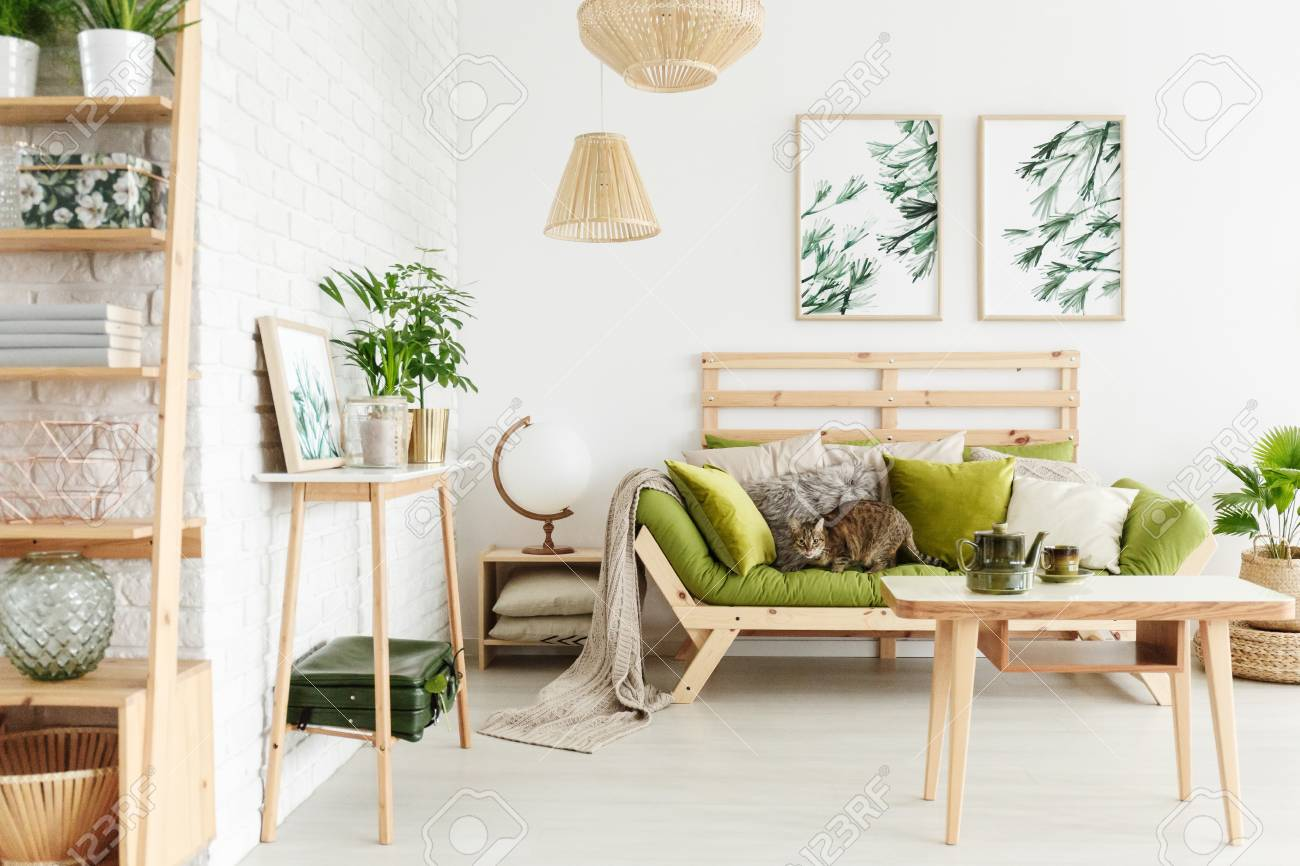 Cat on green wooden sofa with pillows standing under simple posters..