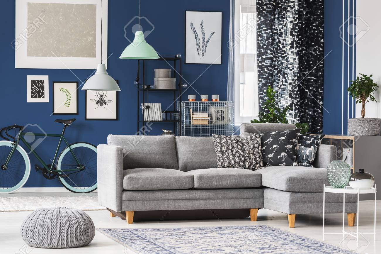 Big Living Room With Blue Walls Grey Sofa And Plenty Of Fashionable Stock Photo Picture And Royalty Free Image Image 97990811