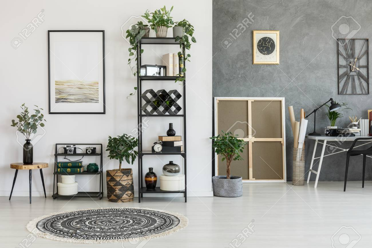 Patterned Round Carpet And Plants On A Shelf In Living Room With