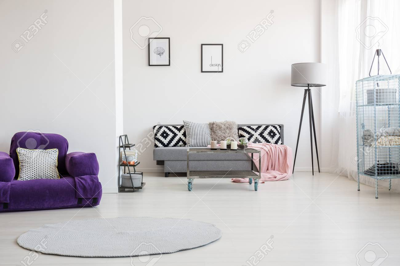 Round Rug And Purple Armchair With Decorative Pillow In Spacious ...