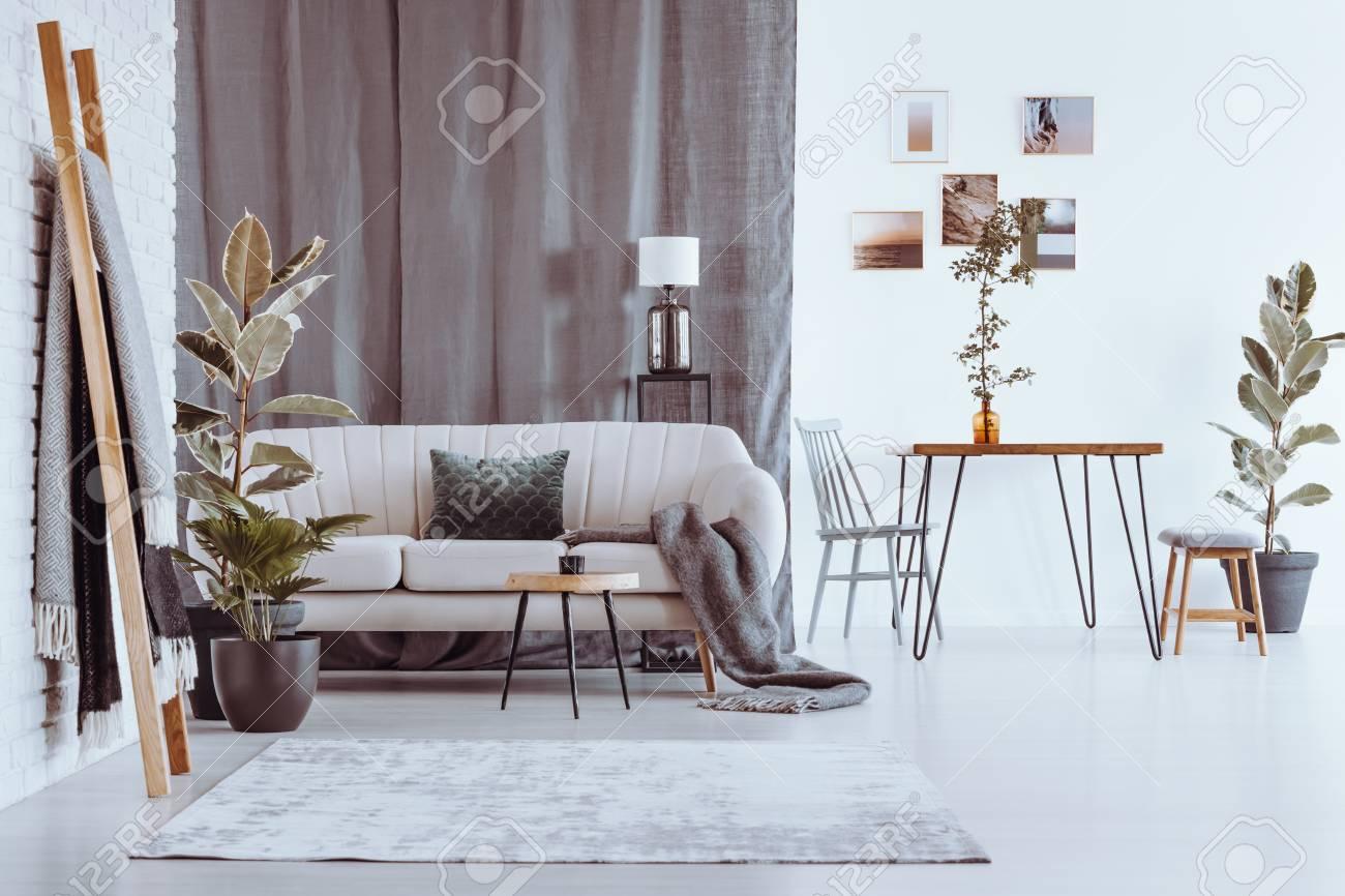 Extrem Leiter Und Pflanzen In Geräumigen Wohnung Mit Sofa Und Esstisch HS06