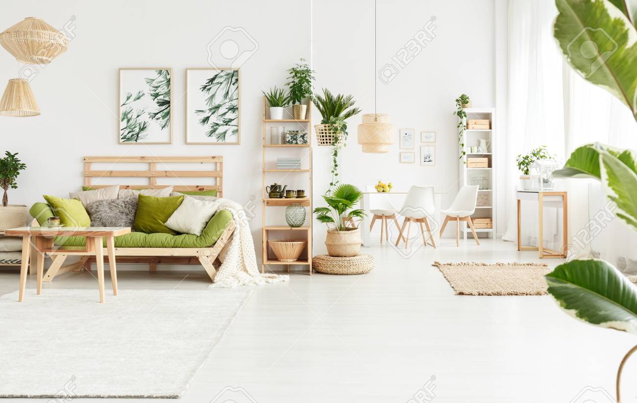 Plant On Pouf Next To Shelves With Kettle And Vase In Natural ...