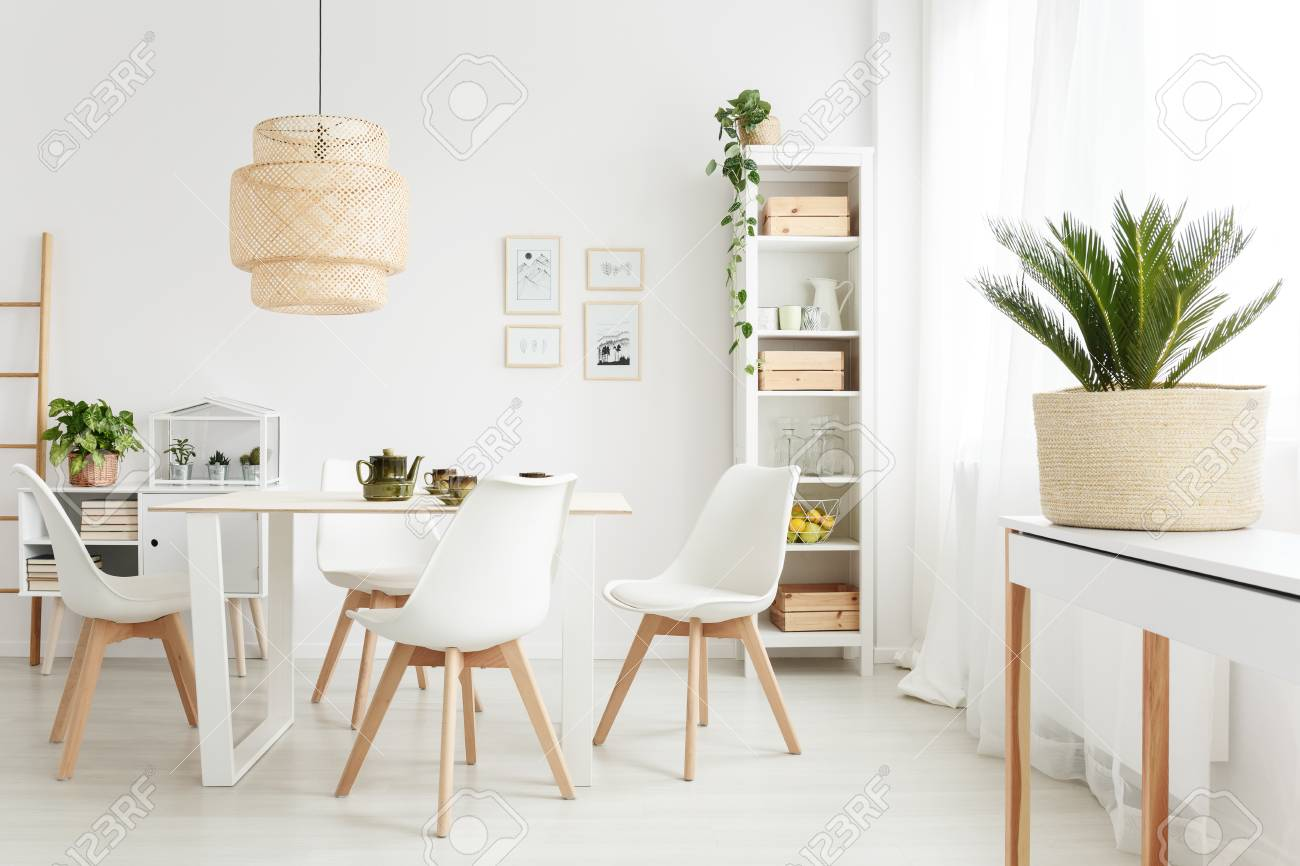 Palm plant on white console table standing near the window in..