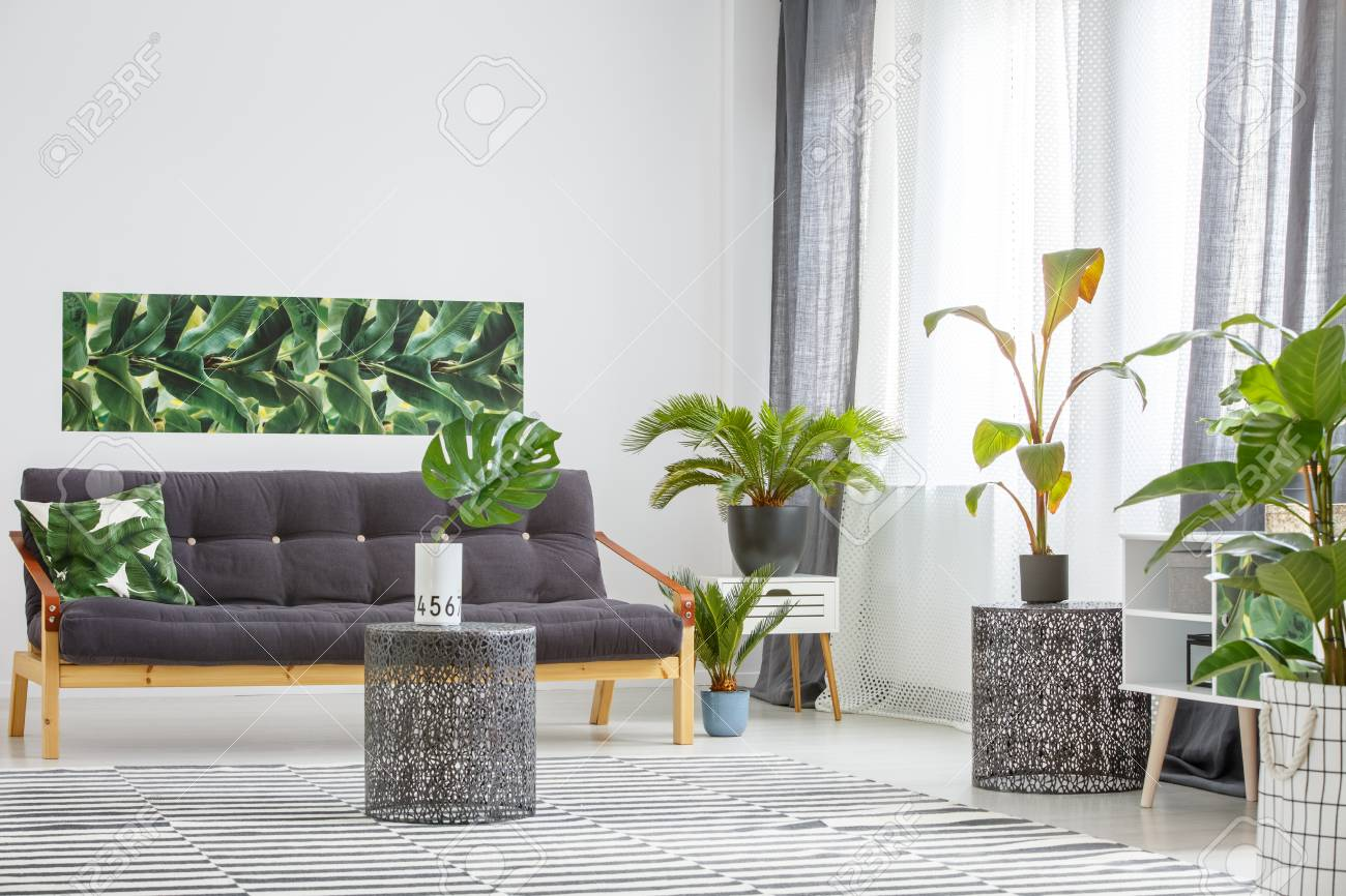 Black, wooden sofa surrounded by green plants in a living room..
