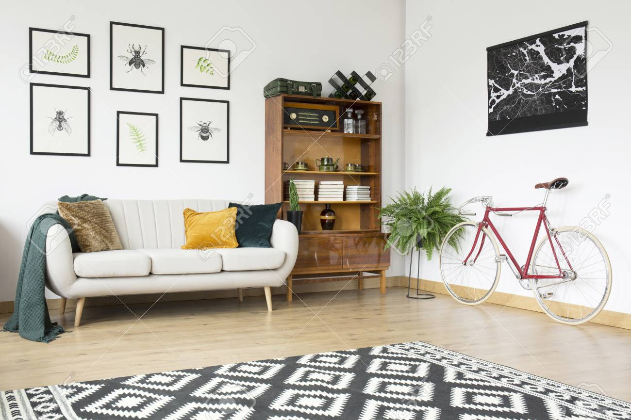 Patterned carpet and bicycle in vintage living room interior..