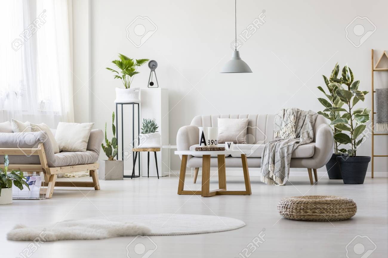 Stock Photo   Stylish Living Room With Two Grey Couches, Fresh Plants And  Wooden Coffee Table